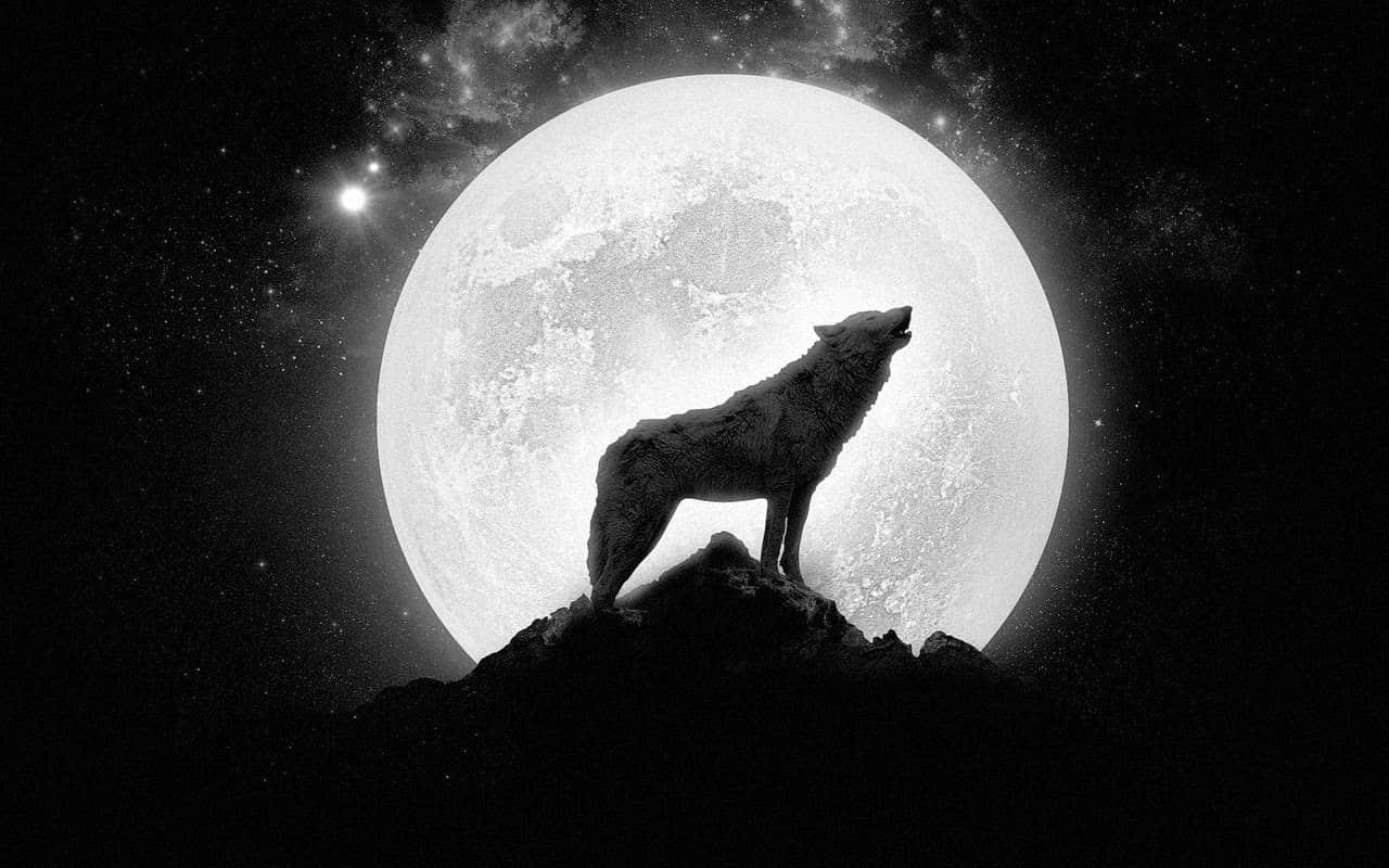La luna del lupo: Wintar-mánód